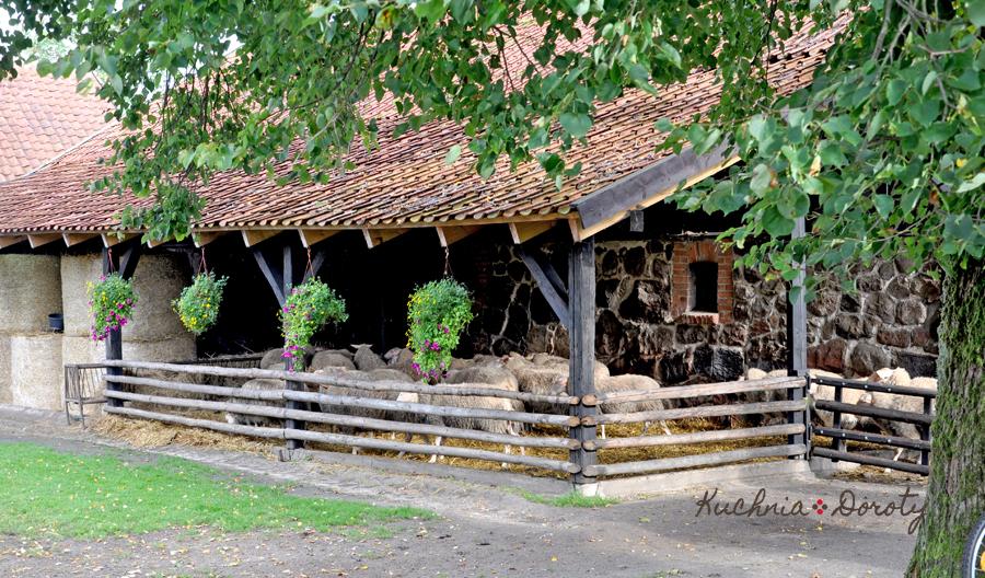 Warpuny – cudowna mazurska wieś